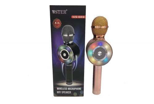 Microfono Inalambrico WS-669
